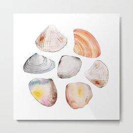 seven seashells Metal Print