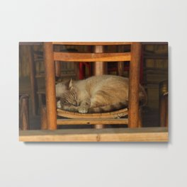 Cat Nap in a Chair Metal Print