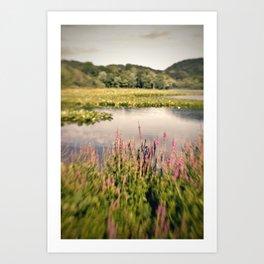 Lake Lomo Art Print