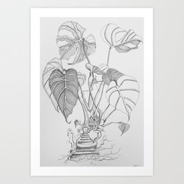 Monstera. Living Art Print