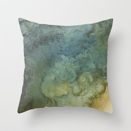 Relief Map 1 Throw Pillow