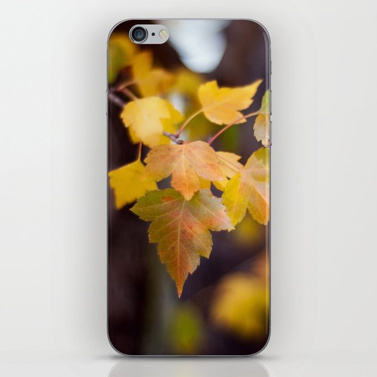 Autumn Yellow iPhone Skin
