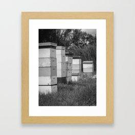 Bee Hives BW Framed Art Print