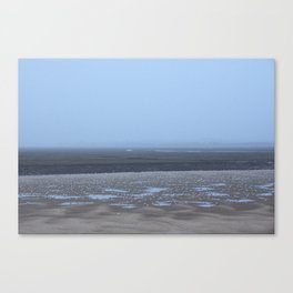 Birds; Gulls on mud flats at low tide on a foggy evening. Wells-next-the-sea, Norfolk, UK. Canvas Print