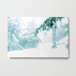 Emerald forest in blizzard and snow Metal Print