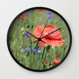 poppy flower no16 Wall Clock