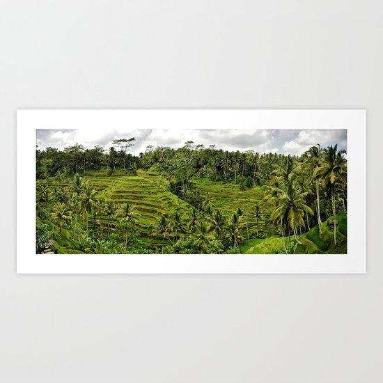 Bali Rice Fields Art Print