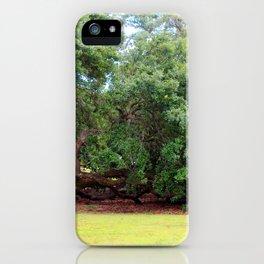 Oak Limbs On The Ground iPhone Case