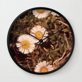 CALIFORNIA POINT LOBOS RESERVE NARA 543197 Wall Clock
