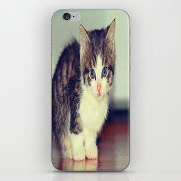Milo The Kitty iPhone Skin