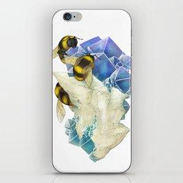 Bees on Fluorite iPhone Skin
