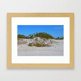 Dunes on Gasparilla III Framed Art Print