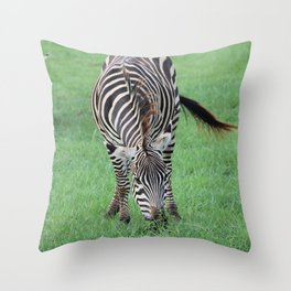 Stripes 1 Throw Pillow
