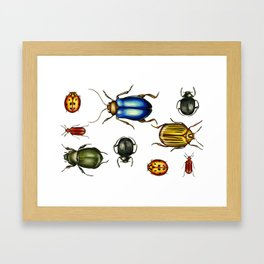 Bugs Framed Art Print