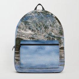 Beach Wave 0388 Backpack