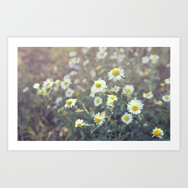 Summer Gives Hope Art Print