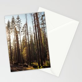 Peeking Sunshine Stationery Cards