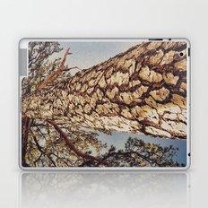 Tree 3 Laptop & iPad Skin