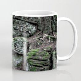 Algonquin Park, Ontario Coffee Mug