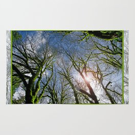 RAIN FOREST MAPLES REACHING FOR THE SKY Rug
