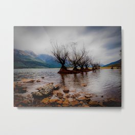 Glenorchy Willow Trees Metal Print