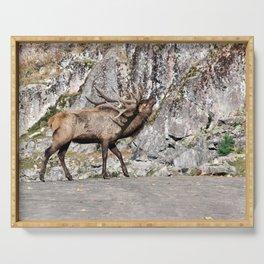 Wapiti Bugling (Bull Elk) Serving Tray