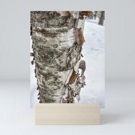 Winter Tree Bark Mini Art Print
