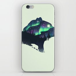 Northern Lights iPhone Skin