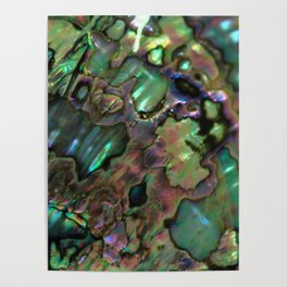 Oil Slick Abalone Mother Of Pearl Poster
