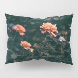Late Autumn Rose #2 Pillow Sham