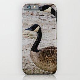 Canadian Loonies iPhone Case