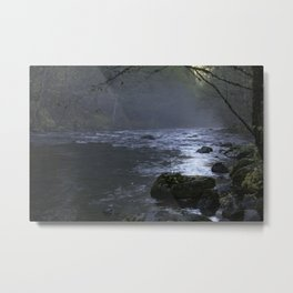 Evening Fog on the MCKenzie River Metal Print