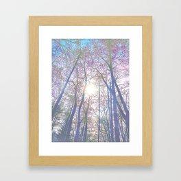 Forest Bath Framed Art Print