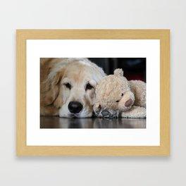 Golden Retriever with Best Friend Framed Art Print