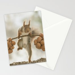 Squirrel the nut carrier Stationery Cards
