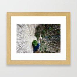 Blue White Peacock Framed Art Print