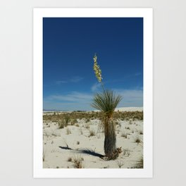 Hard Life in the Desert Art Print