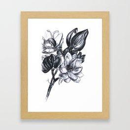 flowers in bloom Framed Art Print