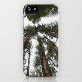 Redwood Portal - nature photography iPhone Case
