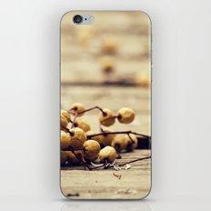 En el suelo iPhone Skin
