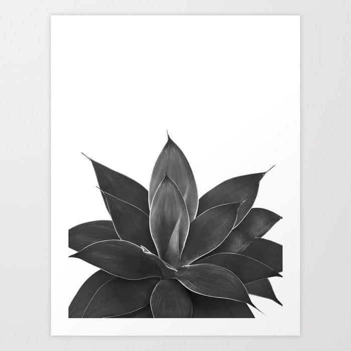 Black Agave #1 #tropical #decor #art #society6 Kunstdrucke