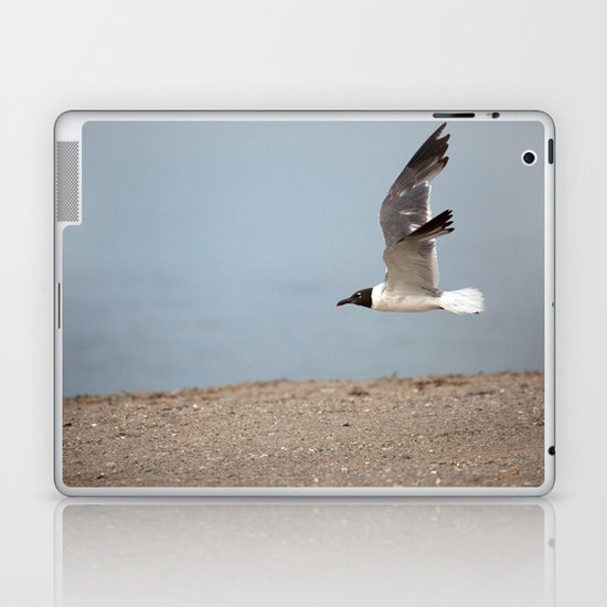 Laughing Gull in Flight Laptop & iPad Skin