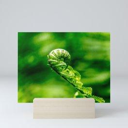 Koru Mini Art Print