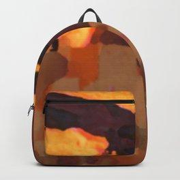 Mesa Verde National Park Colorado Backpack