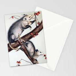 Opossum Stationery Cards