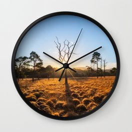 Coronation Plantation - Ireland (RR220) Wall Clock