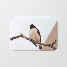 Purching Bird Bath Mat