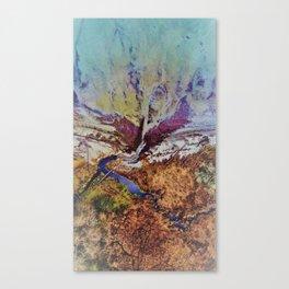 Absurd deep Valley texture Canvas Print