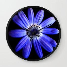 Blue gerbera Wall Clock
