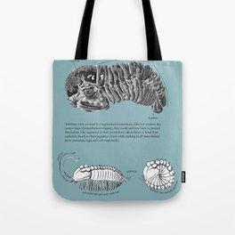 Trilobite Enrollment poster Tote Bag